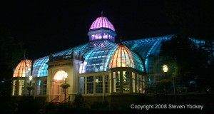 Franklin Park Conservatory Palm House At Night