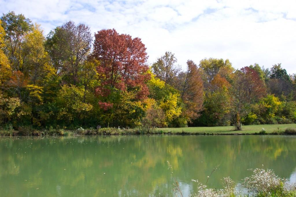 Walking distance to Gahanna's Woodside Green Park